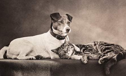 Photograph by Henry Stevens of The Good Companions, c 1889.
