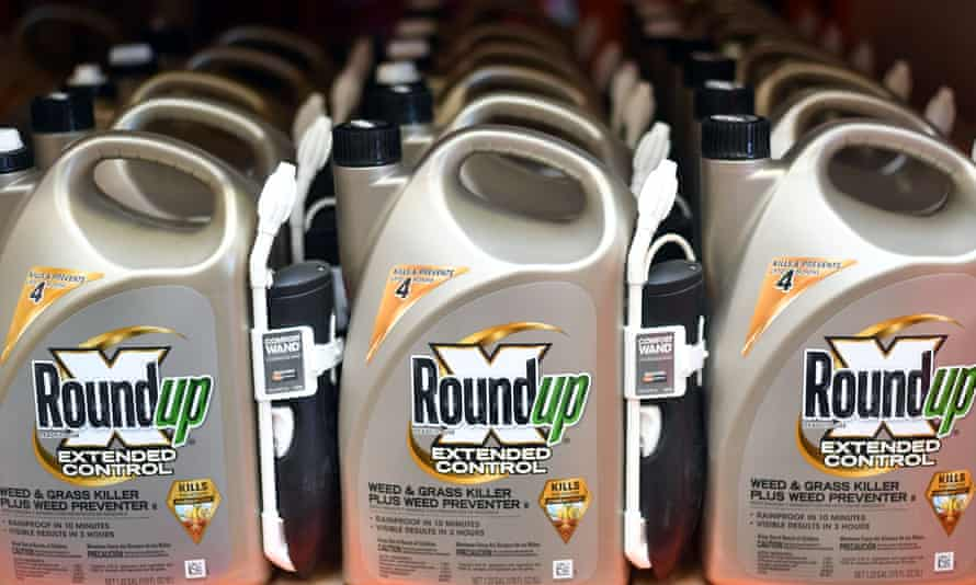 Analysis comes at a critical time as Bayer is asking European regulators to reauthorize glyphosate ahead of the expiration of approval next year.