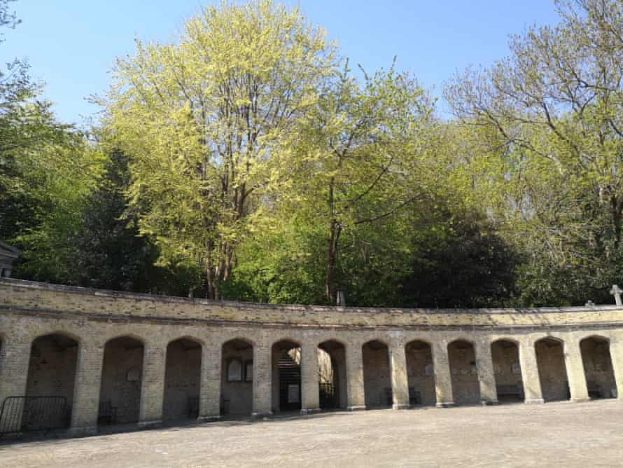 The site within Highgate Cemetery.