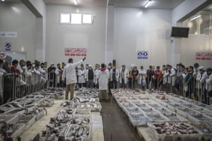 Fish is displayed for merchants during an auction at the main port in Dakhla