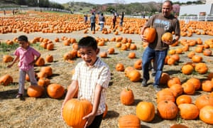 People carry their selected pumpkins at a pumpkin patch in Pomona, California.
