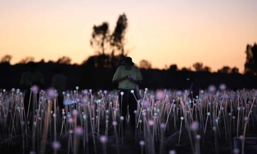 Bruce Munro works on Field of Light.