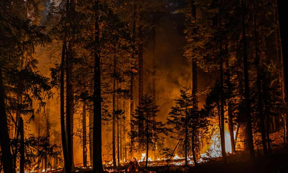 California's Caldor fire jumped Highway 50 as crews continue to battle blaze that has grown to more than 154 sq miles with no containment.