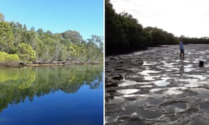 Sediment and pollution in Coombabah Creek on the Gold Coast