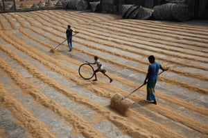 A boy plays with bicycle tire while workers dry rice on a rice-processing mill in Muktarpur, on the outskirt of Dhaka, Bangladesh, December 29, 2016. REUTERS/ Mohammad Ponir Hossain