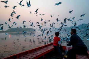 Delhi, India – A father and son feed seagulls near the banks of the Yamuna River