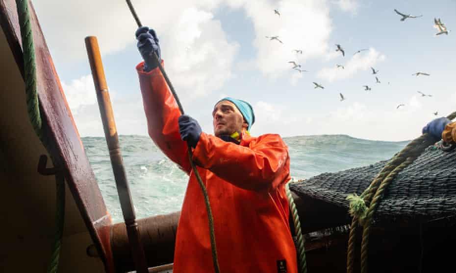 Robert Vimba works on deck as gannets swoop overhead