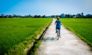 Rear view of a woman riding a bicycle on a footpath amidst farm, in Hoi An, Vietnam.