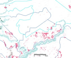 A concession in Indonesia's West Kalimantan owned by pulpwood company Daya Tani Kalbar (APP supplier) drawn in light blue. The overlapping dark blue concessions operated by palm oil company Gerbang Benua Raya. Pink patches are deforestation alerts triggered in the past three months and clearly show encroachment into the pulpwood concession.