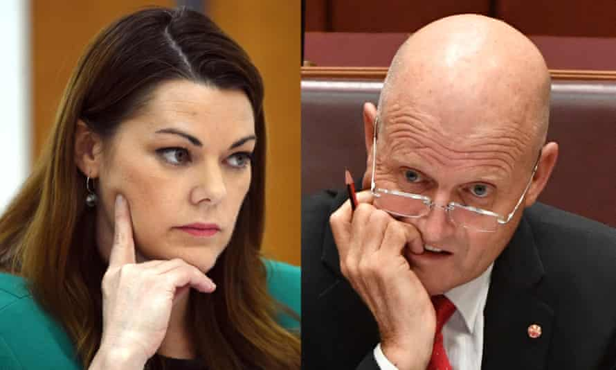 Greens senator Sarah Hanson-Young is suing David Leyonhjelm for defamation over comments she believes amount to 'slut-shaming' and accusing her of being a misandrist.