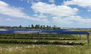 A view of Genex Power's 50 megawatt Kidston solar farm in northern Queensland, Australia April 4, 2019.