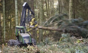 Cutting timber to be used as biofuel in Grizedale Forest, Lake District, UK