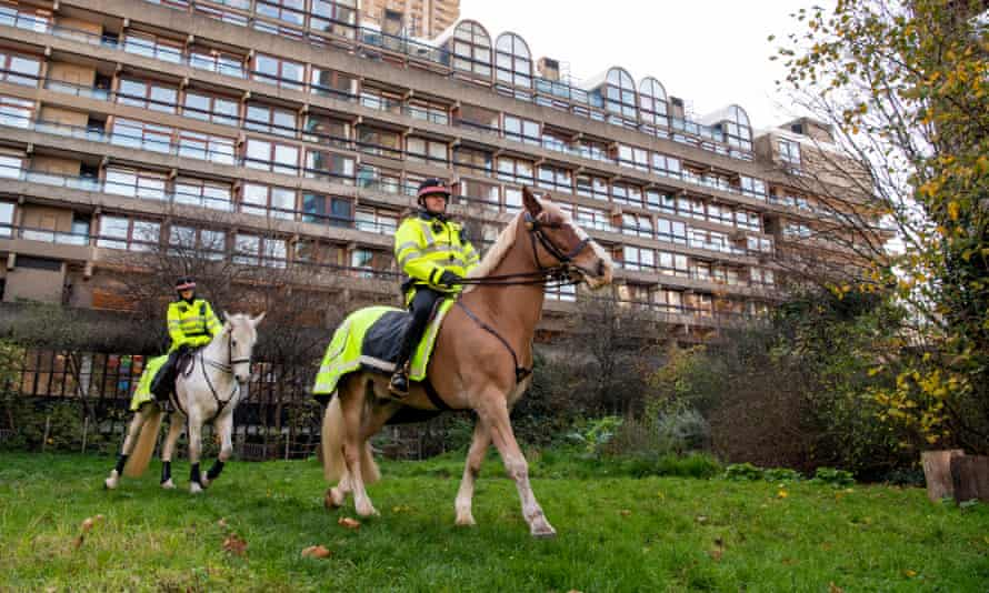 PC Ben Ballard, right, riding Clyde and PC Jo Brown on Iris, create divots and press in seed at Barbican Wildlife Garden in the City of London.