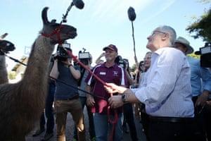Malcolm Turnbull in Nambour