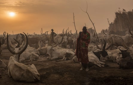 Morning in a cattle camp, South Sudan