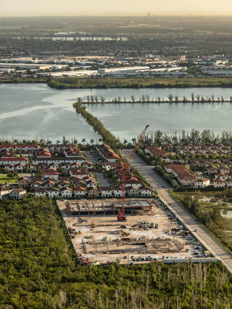 Construction by American Wood Stork Lake Miami bordering the Everglades