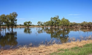 a flooded river in the outback