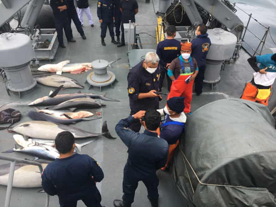 Peru coastguard. the boarding of the Rosario by the Peruvian coastguard, the fishermen and illegal catch being brought back onto the coastguard vessel the BAP Rio Cañete. Also the rescue of the sea lion.