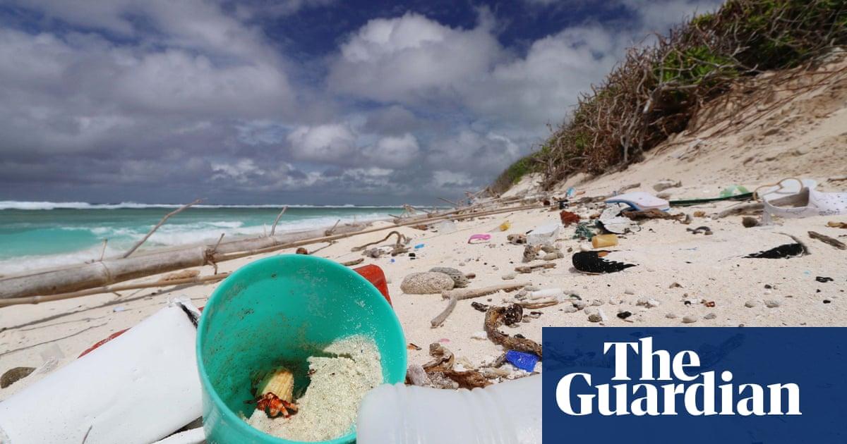 Plastic debris on remote islands raises temperatures by 2.5C and threatens turtle populations