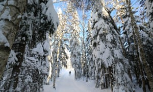 Into the woods … a cross country skier north of Oslo.