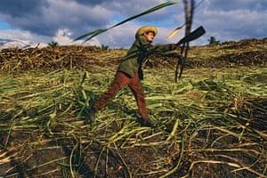 A sugar cane cutter in Havana Province. All Photographs © Lorne Resnick