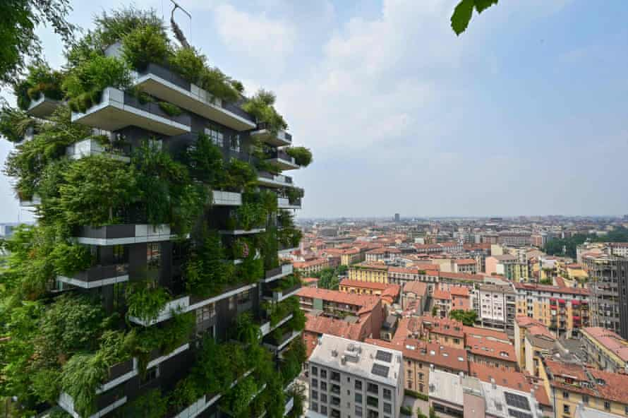 Vegetation sprouts from the Bosco Verticale in Milan.