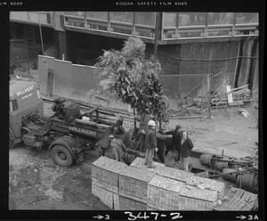 Workmen receive a delivery of trees ready for planting in the Conservatory (Mar 1980)