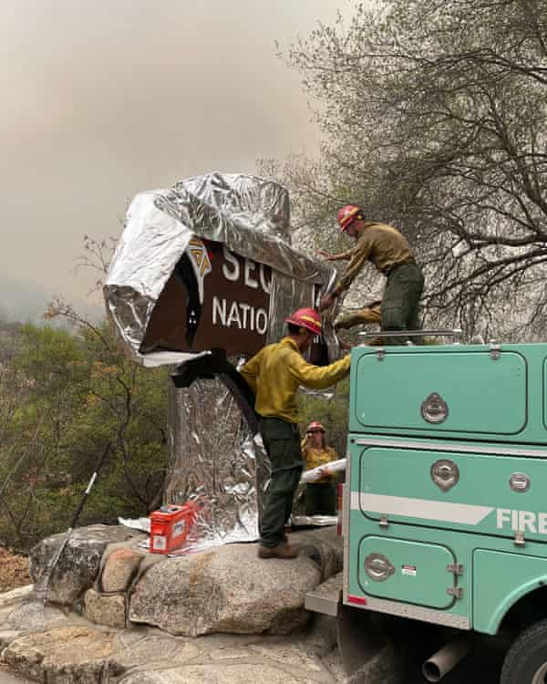 Firefighters wrap the historic Sequoia national park entrance sign with fire-proof blankets in California.