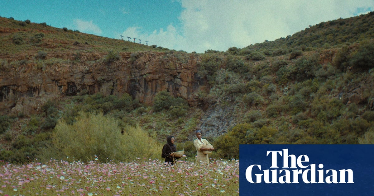 Out of Africa: how Netflix's ambitions could change the continent's cinema