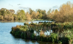 An autumnal scene at the Walthamstow Wetlands in north-east London.