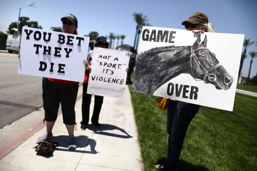 Santa Anita horse deaths