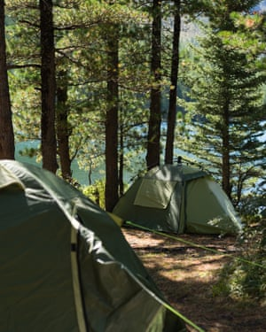 Forest camping in France.