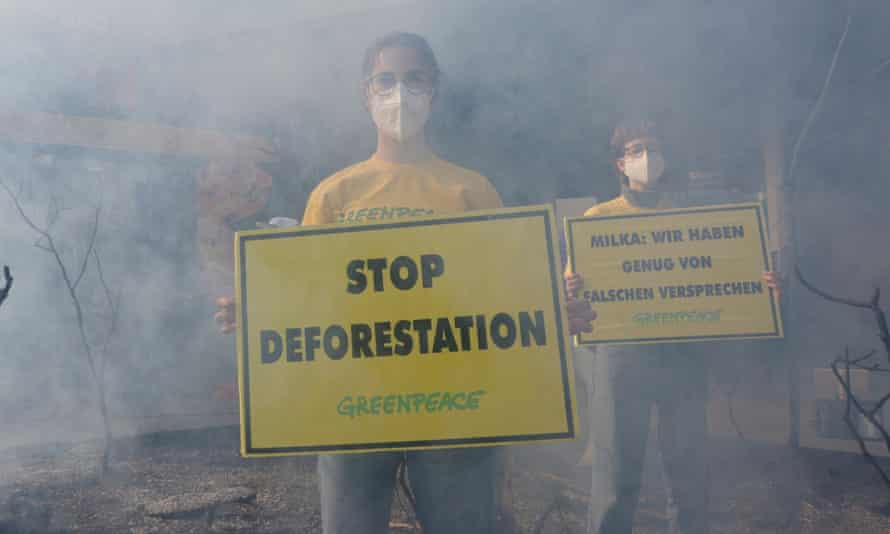 Greenpeace activists stage a protest against deforestation of the Amazon rainforest in Vienna.