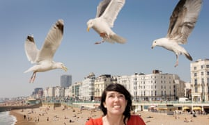 Are there safer ways to keep seagulls at bay?