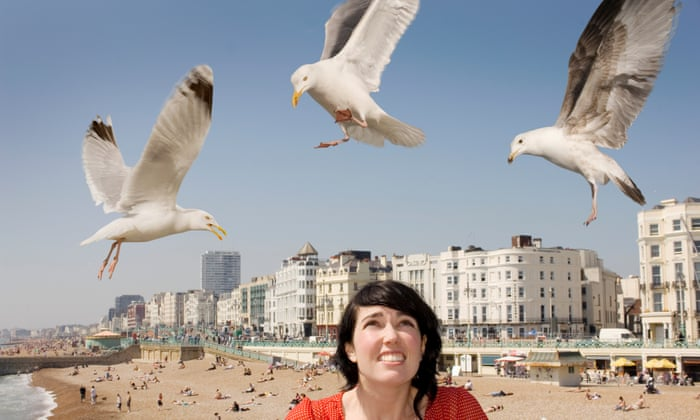 Beware the risks if you do stare down a seagull – it may lead to