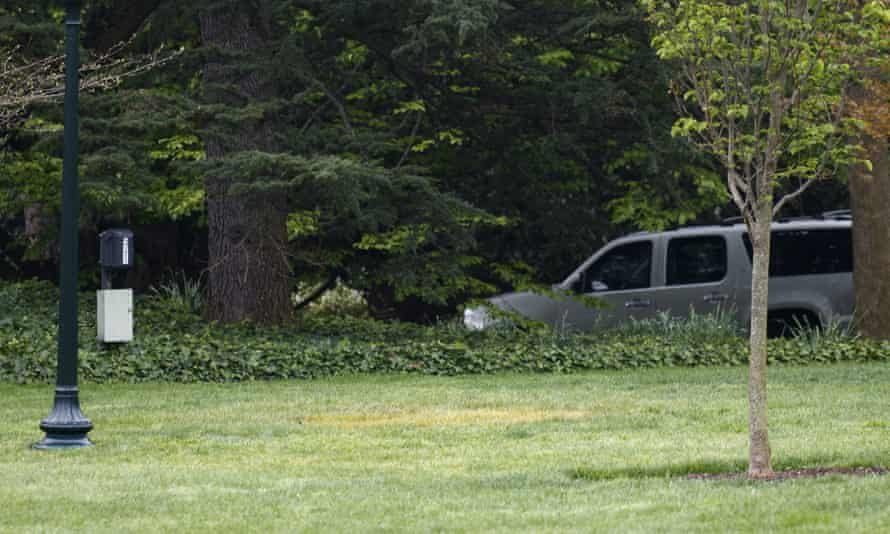Yellowed grass where a tree was planted by Donald Trump and Emmanuel Macron