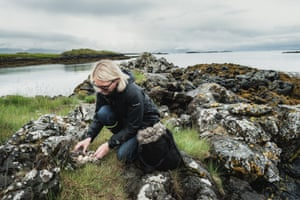 Erla collects eider down in her farm in the Westfjord.
