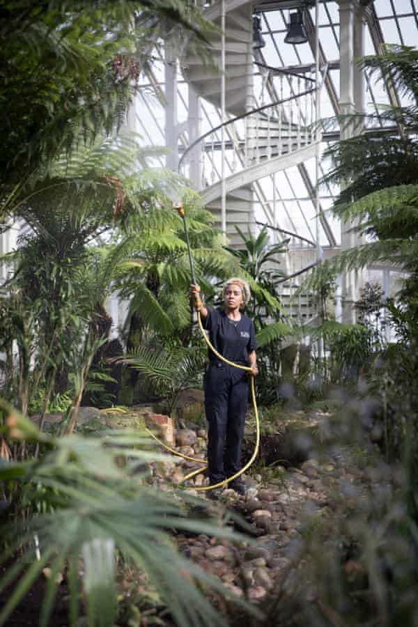 A horticulturalist tends to some of the 10,000 new plants.