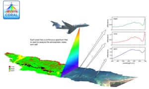 Using a Nasa plane decked-out with a cutting-edge image sensor, Eric Hochberg from the Bermuda Institute of Ocean Sciences and colleagues will examine how much of the area is covered by coral, sand and algae, then repeat the survey at three other locations around the world