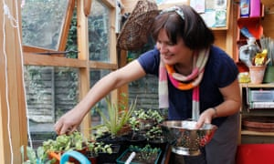 Gardening editor Jane Perrone grows her own and forages for salad leaves, gardening feature for the Guardian Weekend Magazine, Bedford, 18/09/2012 Sophia Evans for The Guardian