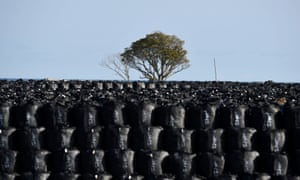 Thousands of large black plastic bags containing radioactive soil and debris