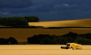 A combine harvester works its way through a field of barley in the UK's chalk downlands as discussion continues about the shape that the Common Agricultural Policy will take.