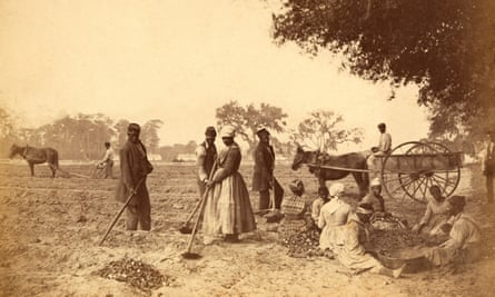 Slaves working in the sweet potato fields in the Hopkinson plantation in South Carolina, c1862