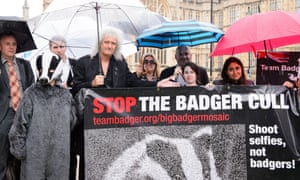 Campaigners call for an end to the badger cull, London, 12 Jul 2016