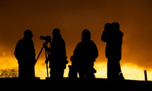 Group of birdwatchers silhouetted against twilight