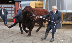 Johnson had a more troublesome animal encounter on Friday, struggling to control a bull during a visit to Darnford Farm in Banchory near Aberdeen.