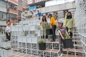 Volunteers help plant all 430 planter boxes