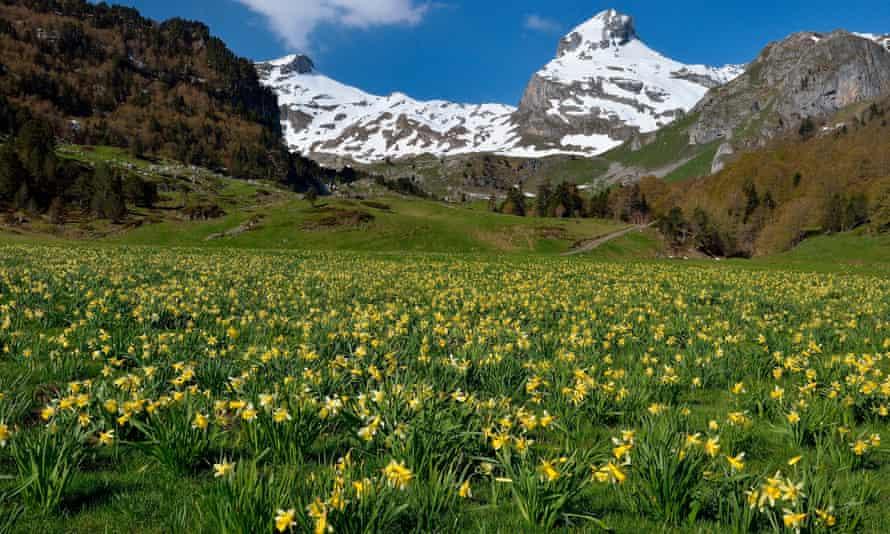 Valle de Osau, Parque Nacional de los Pirineos