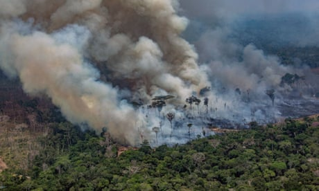 Amazon rainforest fires: Brazil to reject $20m pledged by G7