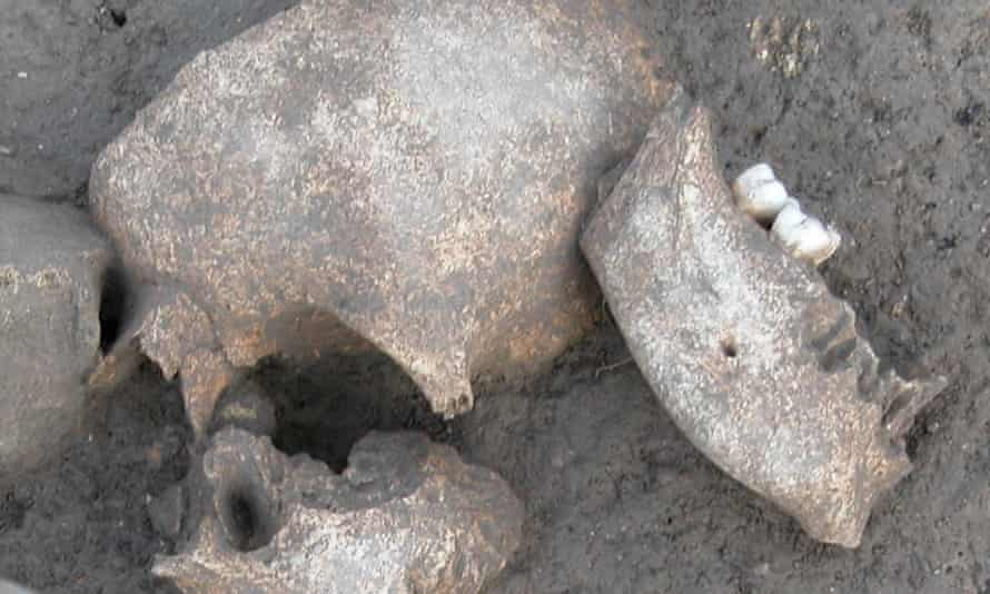 Experts found traces of conifer resins on ancient skulls Le Cailar iron age site in France